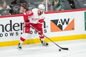 Feb 12, 2017; Saint Paul, MN, USA; Detroit Red Wings forward Riley Sheahan (15) during a game between the Minnesota Wild and Detroit Red Wings at Xcel Energy Center. The Wild defeated the Red Wings 6-3. Mandatory Credit: Brace Hemmelgarn-USA TODAY Sports